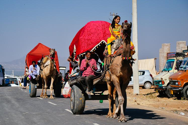 Można się też na wielbłądzie przejechać, fot. Asia