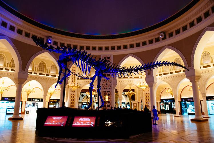 Chcieli, więc kupili sobie szkielet dinozaura z muzeum. Za 80 mln dolarów (fot. Kuba Głębicki)
