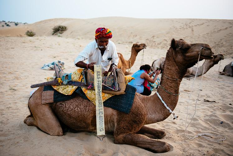 Camela trzeba po jeździe rozsiodłać (fot. Kuba Głębicki)