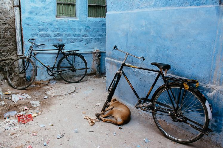 Jodhpur, fot. Kuba Głębicki