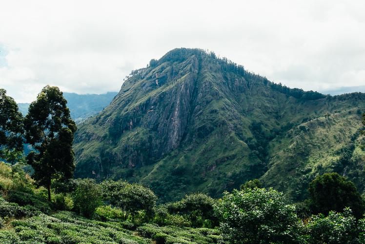 Widok na Ella Rock z Little Adam's Peak, fot. Kuba Głębicki