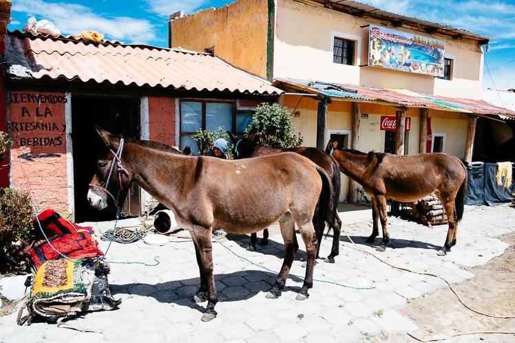 fot. Kuba Głębicki